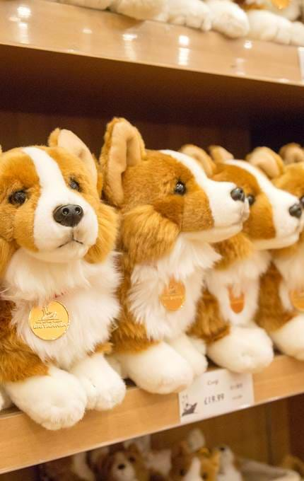 Cuddly toy corgis.