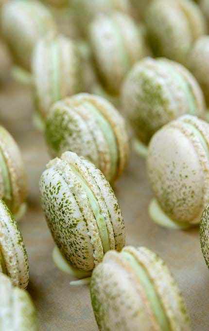 Close up of Fingal's macarons
